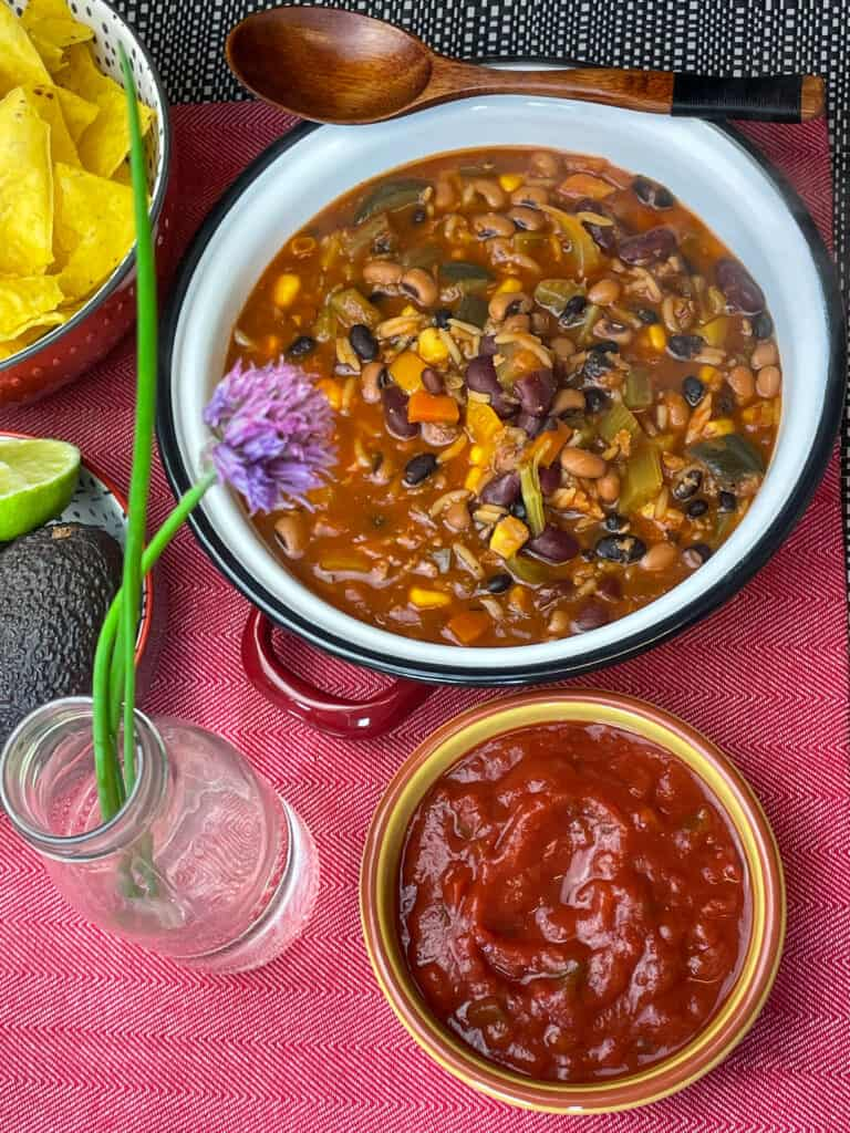 taco bean soup with small bowl of salsa, tortilla chips off to the side, and a chive flower in a glass bottle. Red background.