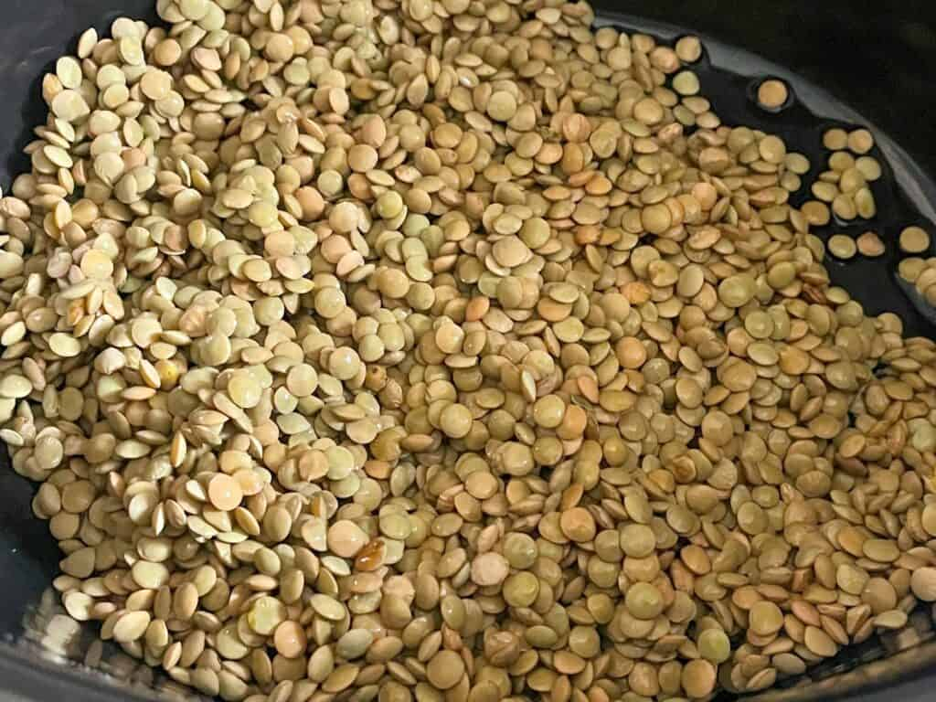 dried green lentils in slow cooker pot.